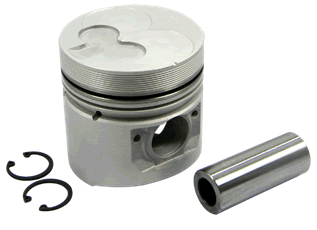 Piston & Pin & Snap Ring